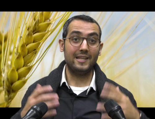 NUTRITION DANS LA PARACHAT 32 – VAYISHLAH 8 – Shalom Fitoussi