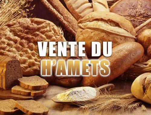 La vente du Hamets