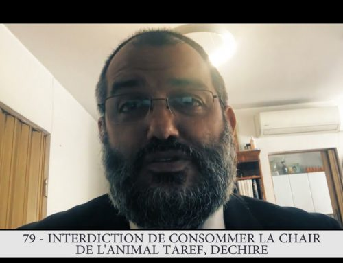 613 – 79eme MITSVA DE LA TORAH – Interdiction de consommer la chair de l'animal tarèf, déchiré