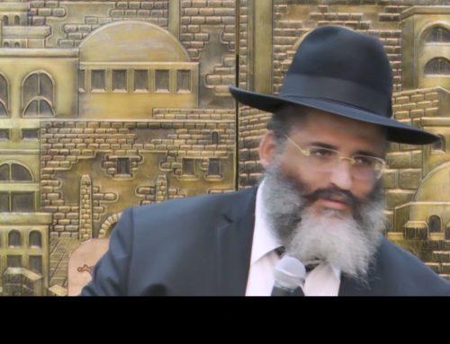 RAV ISRAEL ABERGEL 11 – Comment voir que le bien ?