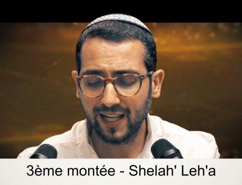 SHELAH LEHA 37 – LECTURE DE LA PARACHAT (ou Préparation) – Shalom Fitoussi