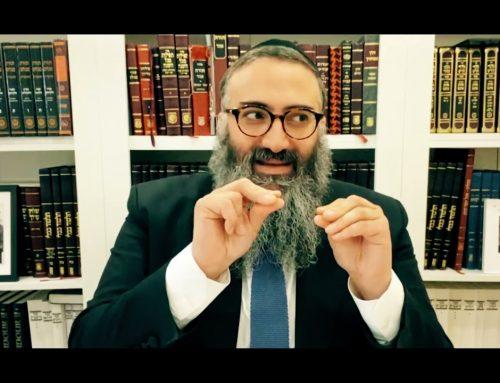 LE TANYA 13 – La pleine conscience – Rav Yehuda Israelievitch