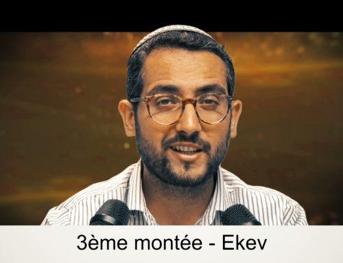 EKEV (46) – LECTURE DE LA PARACHAT (ou Préparation) – Shalom Fitoussi