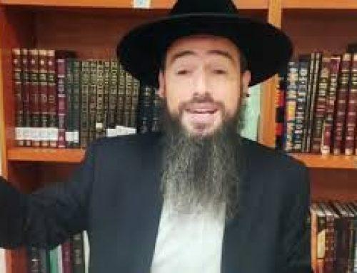 KI TETSE (49) – Par Rabbi Raphael Pinto