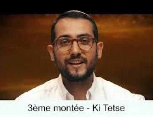KI TETSE (49) – LECTURE DE LA PARACHAT (ou Préparation) – Shalom Fitoussi