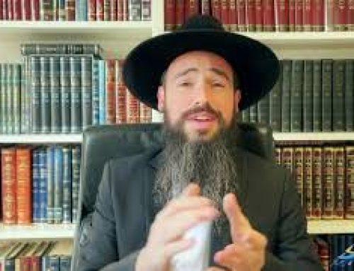 BERECHIT (1) – Par Rabbi Raphael Pinto